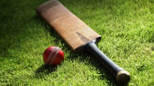 Read these tips before buying a cricket bat for you